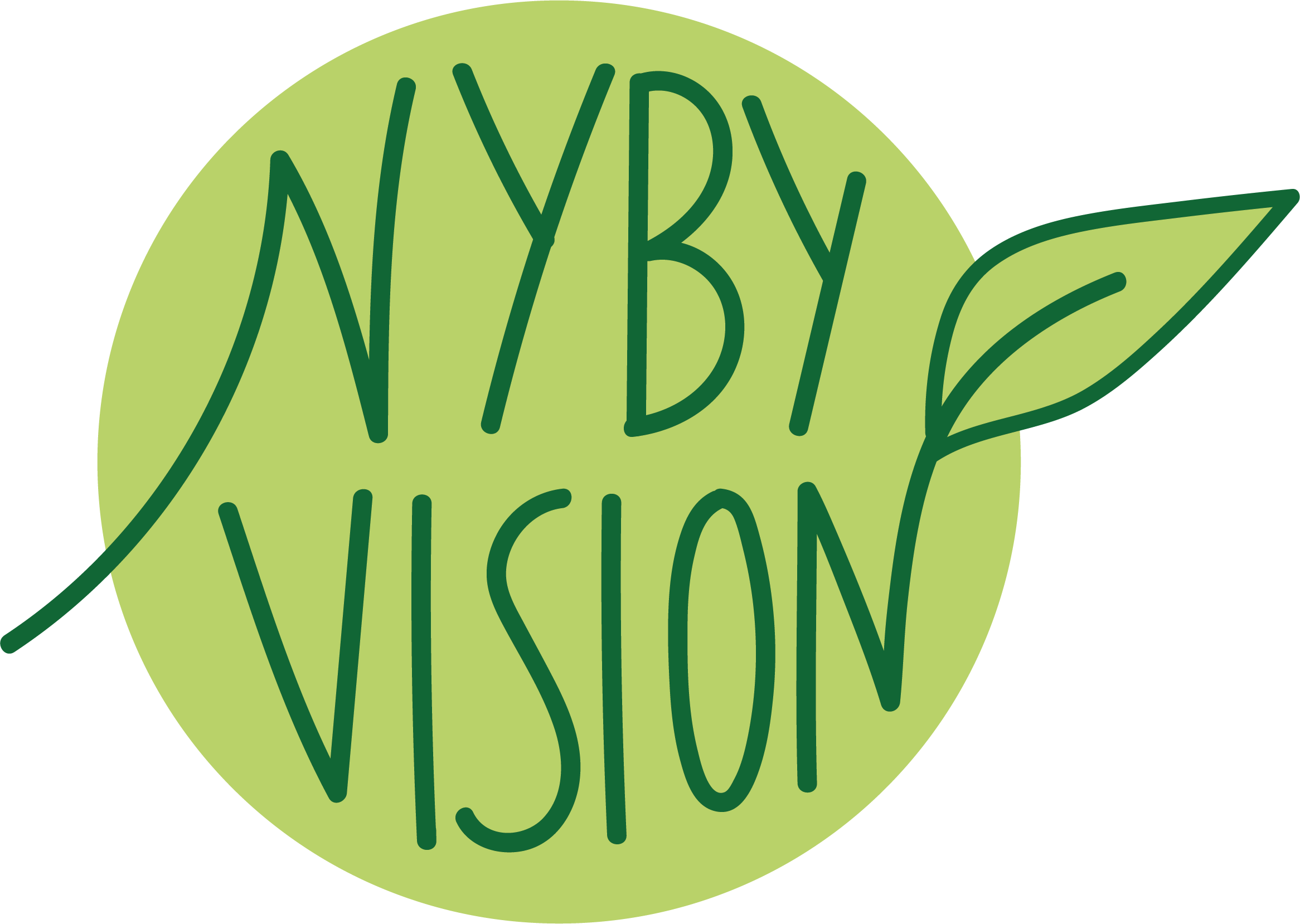 NybyVision